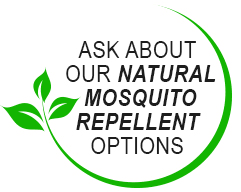 Best Backyard Bug Repellent Best Backyard Mosquito Control Services 919 825 1209