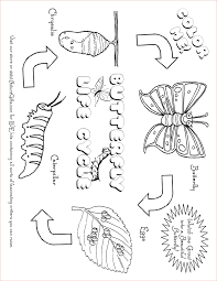 free butterfly coloring pages butterfly cycle