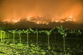 napa photo week hell descends on california wine
