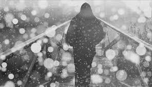 snow free pictures pixabay