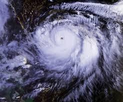 Typhoon Mireille