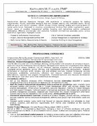 How To Write Professional Summary For Resume Sample Of A Professional Resume Resume Samples And Resume Help