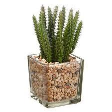 Plant Vase Buy 7
