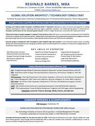 Expeditor Resume Technology Consultant Sample Resume