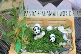 panda bear pictures for kids