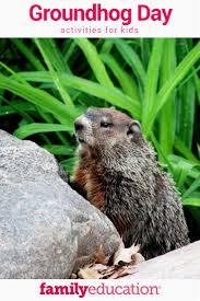 29 best groundhog day images on pinterest groundhog day ground