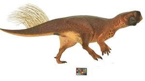 realistic reconstruction dinosaur
