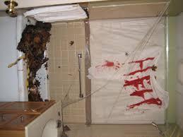 best decorate a bathroom photos decorating home design othello