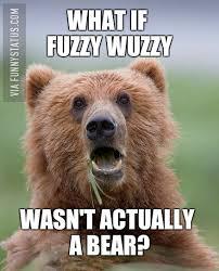 Bear Meme - bear meme archives funny status