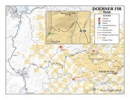 Map Of Coos Bay Oregon by Doerner Fir Trail The Doerner Fir Is One Of The Largest Co U2026 Flickr