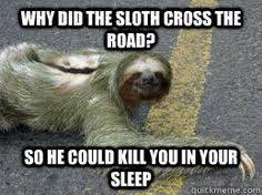 Sloth Meme Maker - omg hahaha ohhh creepy sloth fun with sarahtops pinterest