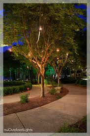 the ritz carlton greensboro ga the outdoor lights atlanta s