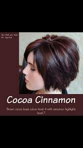 hair color and cut for woman 57 yrs old best 25 cinnamon hair ideas on pinterest cinnamon hair colors