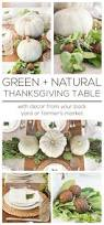 thanksgiving green tips thanksgiving series part 1 a dressed up table setting