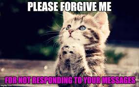 Cute Kitty Memes - cute kitty memes imgflip