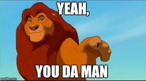 Lion King Meme Maker - lion imgflip