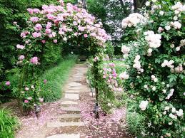 Pictures Of Trellises And Arbors Best Rose Trellis Ideas