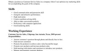 Resume Objective Customer Service Examples Customer Objectives Examples Cbshow Co