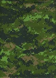 Color Blind Camouflage Test Multi Scale Camouflage Wikipedia