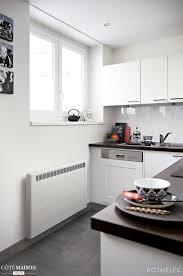 cuisine marque marque de cuisine beau radiateur électrique cuisine rothelec c té