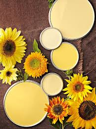 yellow paint colors color paints cozy and summer