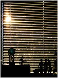 Cost Of Blinds Types Of Blinds That Will Definitely Suit Your Window Indoor