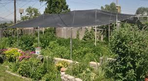 garden shade cloth gardening guide