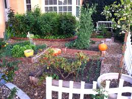 garden ideas without grass backyard transformation the before sink and
