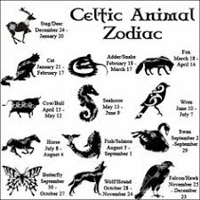 wiccateachings the celtic animal zodiac the great lengths