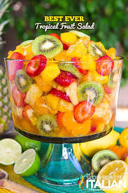 best 25 tropical fruit salad ideas on fruit dishes
