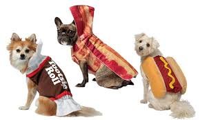 Food Themed Halloween Costumes Food Halloween Costumes Dogs Groupon Goods