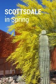 Grapefruit League Map Best 25 Baseball Spring Training Ideas On Pinterest Spring