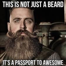 Beard Memes - 50 funny beard memes that ll definitely make you laugh