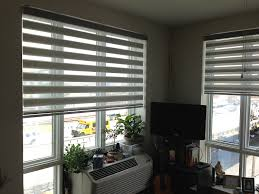 amazon com zebra roller blind light filtering sheer shade