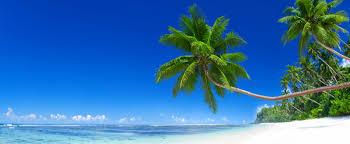 vacation rental in siesta key fl
