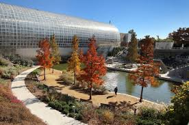 Oklahoma City Botanical Garden Downtown Oklahoma City Becomes Backdrop For Fall Colors News Ok