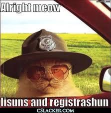 Super Troopers Meme - hhahahh super troopers internet memes juxtapost