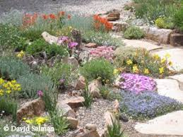 15 best rock gardens images on pinterest garden ideas gardens