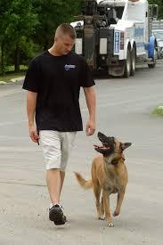 belgian malinois jet black va dog trainer to appear on reality series u0027alpha dogs u0027 wtop