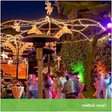Patio Umbrellas San Diego Patio Umbrellas San Diego How To San Diego Zoo Venues San Diego