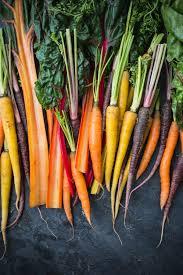 carrot side dish for thanksgiving vegetarian thanksgiving side dish rainbow carrots and chard