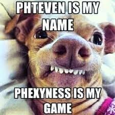 Sexy Dog Meme - dat ass doe pheven dog d pinterest humor stuffing and memes