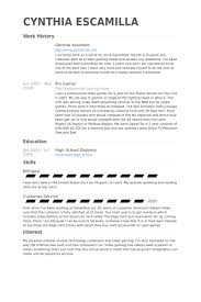 Virtual Assistant Resume Sample by General Assistant Resume Samples Visualcv Resume Samples Database