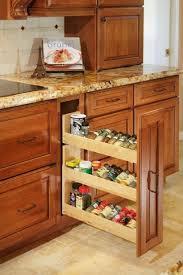 The  Best Mediterranean Kitchen Spice Racks Ideas On Pinterest - Kitchen cabinet spice storage