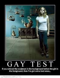 Gaay Meme - gay test reposti