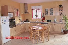 meuble cuisine taupe avis peinture v33 renovation meuble cuisine pour idees de deco de
