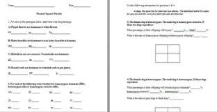 punnett square practice worksheets with answer keys by the science  with punnett square practice worksheets with answer keys from teacherspayteacherscom
