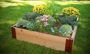 raised garden beds raised bed kits frame it all