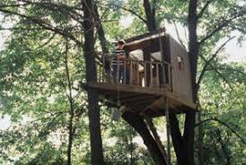 Tree House Floor Plan How To Make Floor Plans For A Tree House Ehow