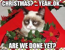 We Are Done Meme - grumpy cat mistletoe meme imgflip